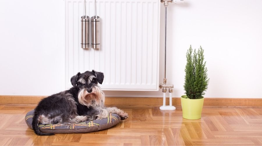 wall heaters to replace baseboard heater
